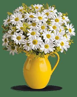 Arrangement floral pichet Journée ensoleillée de marguerites de Teleflora