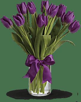 Bouquet de Tulipes violettes captivantes
