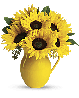 Teleflora S Sunny Day Pitcher Of Sunflowers Flower Arrangement