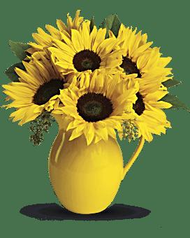 Arrangement floral pichet Journée ensoleillée de tournesols de Teleflora