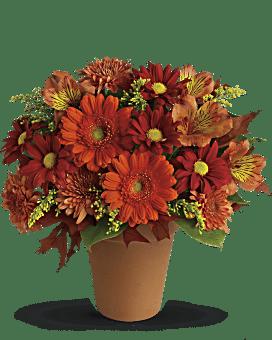 Arrangement floral Lueur dorée