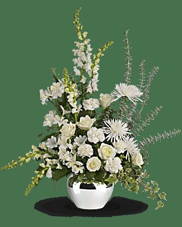 Resultado de imagen de flowers reflections