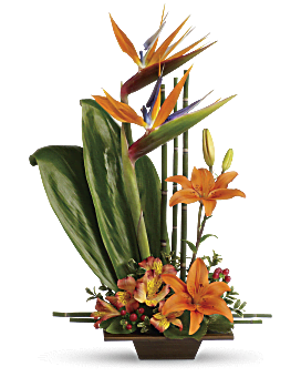 Flowers Arrangement Pictures imagination blooms with cymbidium orchids flower arrangement