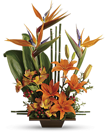 teleflora's exotic grace flower arrangement  teleflora, Natural flower