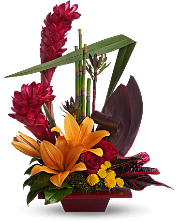 Flowers Arrangement Pictures teleflora's exotic grace flower arrangement - teleflora
