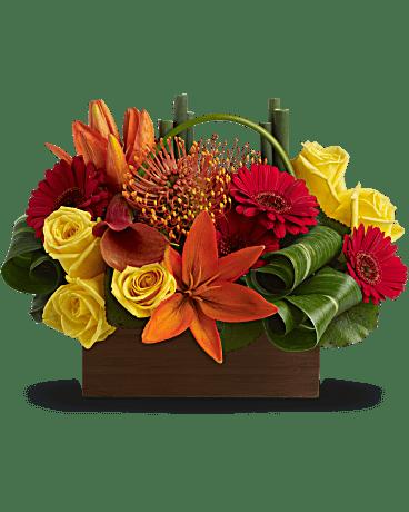 Arrangement floral Évasion de bambous de Teleflora