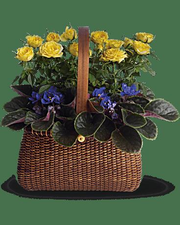 Blooming Garden Basket Teleflora