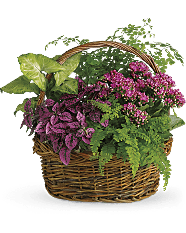 Secret Garden Basket Teleflora