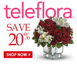 Shop Now and Save 20%