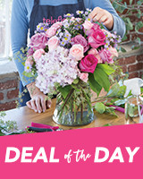 Send a Deal of the Day Bouquet