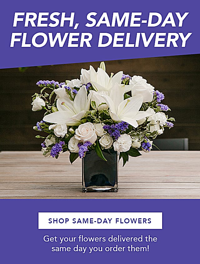 Send Same Day Flowers