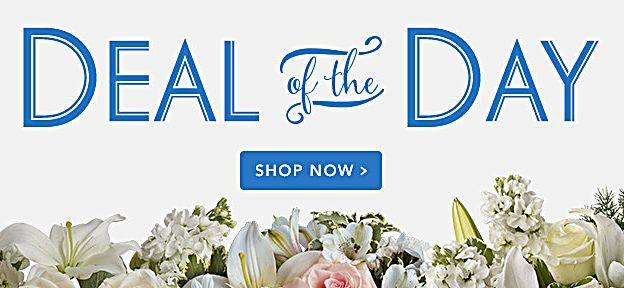 Deal of the Day - Seasonal fresh flowers at a special price.