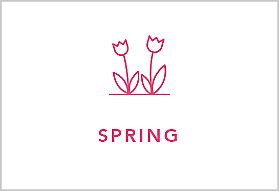 Shop Spring Flowers