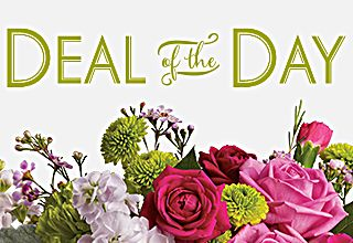 With our Deal of the Day bouquets, you pick your price and our expert florists ...