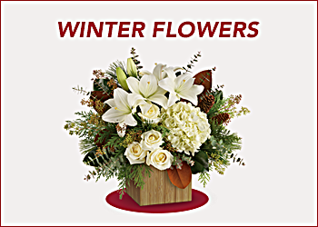 shop christmas flowers our favorite christmas bouquets