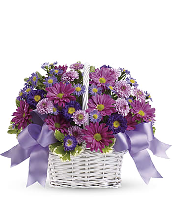 Daisy Daydreams Flowers