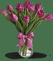 Precious Pink Tulips Flowers