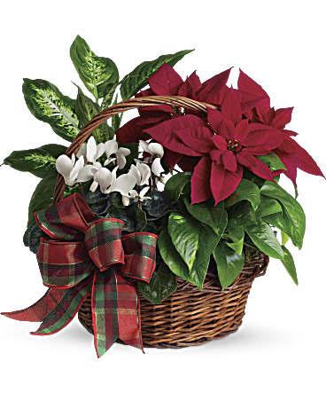 Christmas gift baskets ottawa canada
