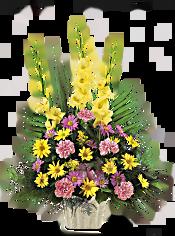 Warm Thoughts Arrangement Flowers