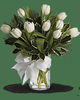Bouquet Tulipes et pin