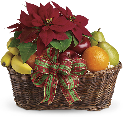 Panier Fruits et poinsettias
