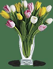 Teleflora's Tulip Treasure Flowers