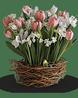 Tulip Song Basket Arrangement