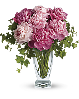 Peony perfection! Everyone loves the lush, cloud-like appearance of fresh cut peonies. The romantic, feminine bloom is a popular summer wedding flower. In fact, many brides select their June or July wedding dates based on the cut peony flower season! This simple bouquet is a beautiful pick for any pink-lover. Also, a luxurious wedding centerpiece. Perfect Peonies - Multi - Flower Delivery By Teleflora