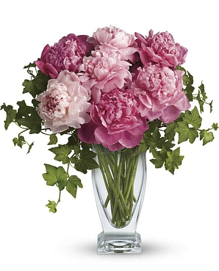 Perfect Peonies Flowers