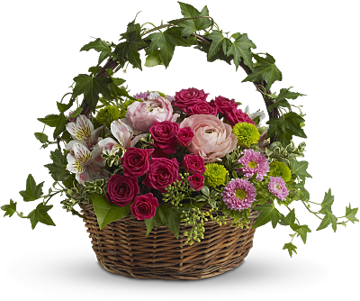 Shop for Ranunculus