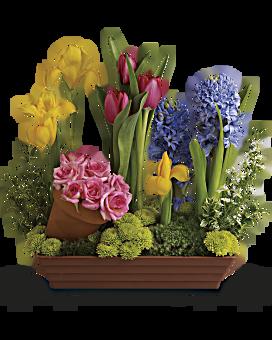 Spring flowers teleflora quick view spring favorites flower arrangement mightylinksfo