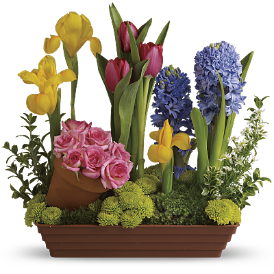 Wedding Anniversary Gift Ideas Teleflora