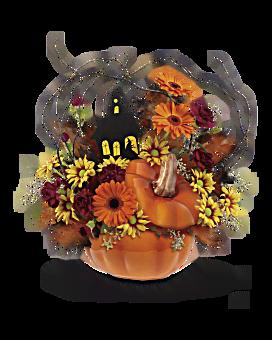Bouquet Maison hantée de Teleflora
