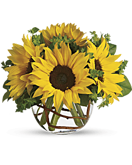 Yellow flower arrangements are so happy teleflora quick view sunny sunflowers bouquet mightylinksfo