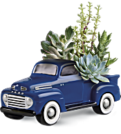 His Favorite Ford F1 Pickup by Teleflora Plants
