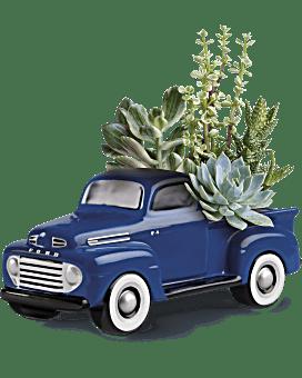 Plante Sa camionnette favorite Ford F1 classique par Teleflora