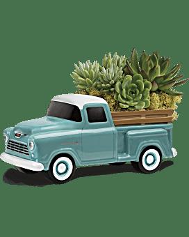 Plante Camionnette Chevy parfaite par Teleflora