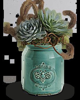 Teleflora's Living Love Garden Plant