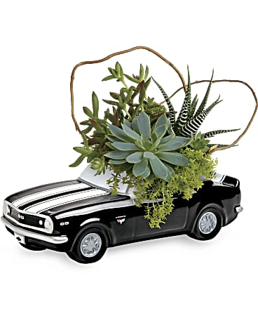 Order a Chevy Camaro Plant Garden for Father's Day