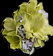 Soft Green Glamour Wristlet Flowers