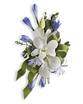 Prom flowers corsages boutonnieres teleflora quick view blue and white elegance corsage corsage mightylinksfo
