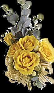 Sunswept Corsage Flowers