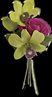 Orchid Celebration Boutonniere Flowers