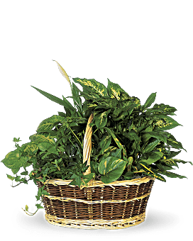 Large Basket Garden Basket Arrangement
