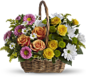Sweet Tranquility Basket Flowers