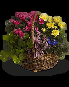 Send yellow flowers to convey sympathy teleflora quick view blooming garden basket basket arrangement mightylinksfo