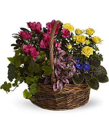 Blooming Garden Basket Basket Arrangement