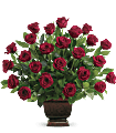 Teleflora's Rose Tribute Flowers
