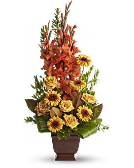 A vivid tribute to warm memories and warmer emotions, this orange and gold arrangement celebrates a spirited individual and a life well lived. Funeral Flowers - Sentimental Dreams - Orange - Flower Delivery By Teleflora