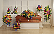 Teleflora's Colorful Reflections Collection Flowers